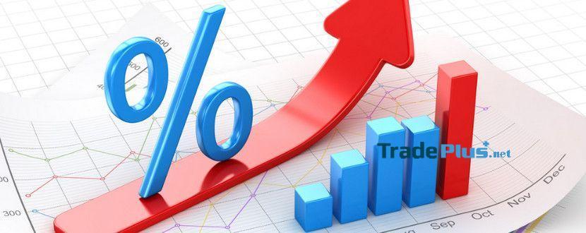 các chỉ số tài chính cơ bản trong Forex